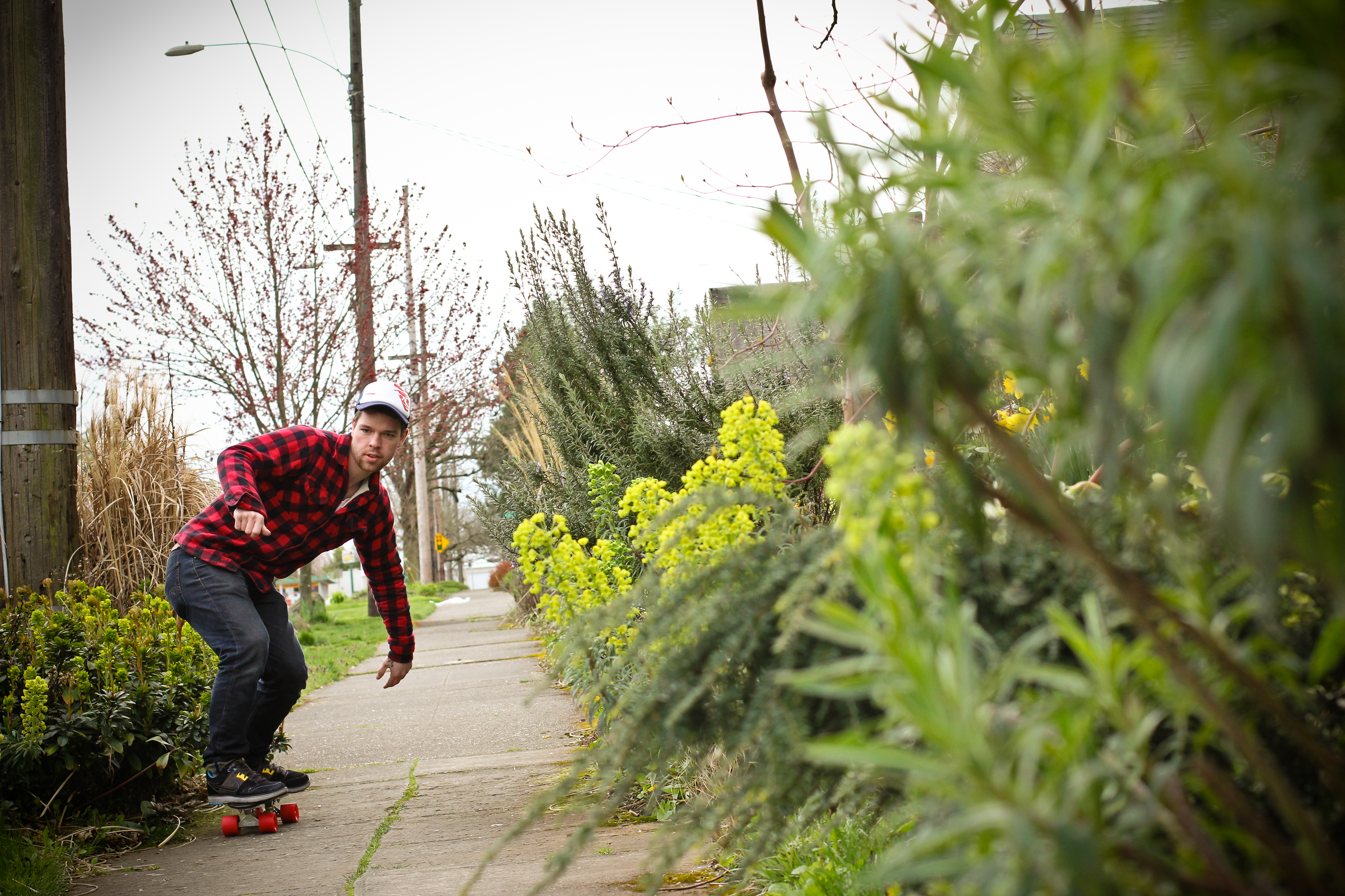 Coupons skate warehouse